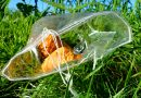14 tips tegen voedselverspilling