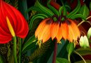 This stunning animation beautifully illustrates the secret life of flowers