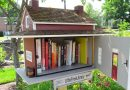 Love little free libraries? These people didn't stop at books