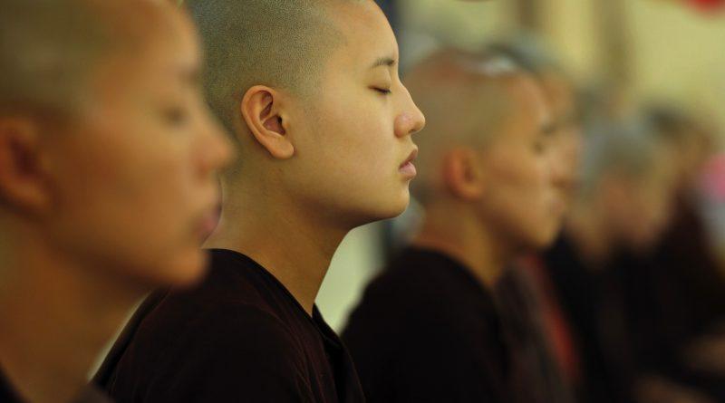 meditatie verandert