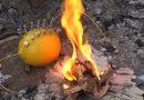 You tuber specialized in survival skills teaches us how to start a fire using a lemon