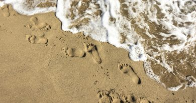 Karmic footprint