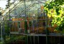 Zweeds stel bouwt een huis onder een glazen kas