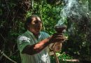 Pachamama, science, spirituality