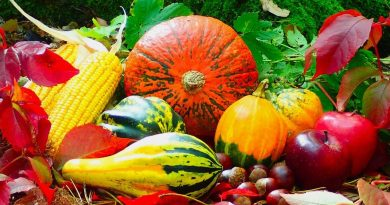 Seasons change and so should your diet