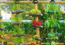 Vertical gardening with recycled plastic bottles: cool in more ways than one