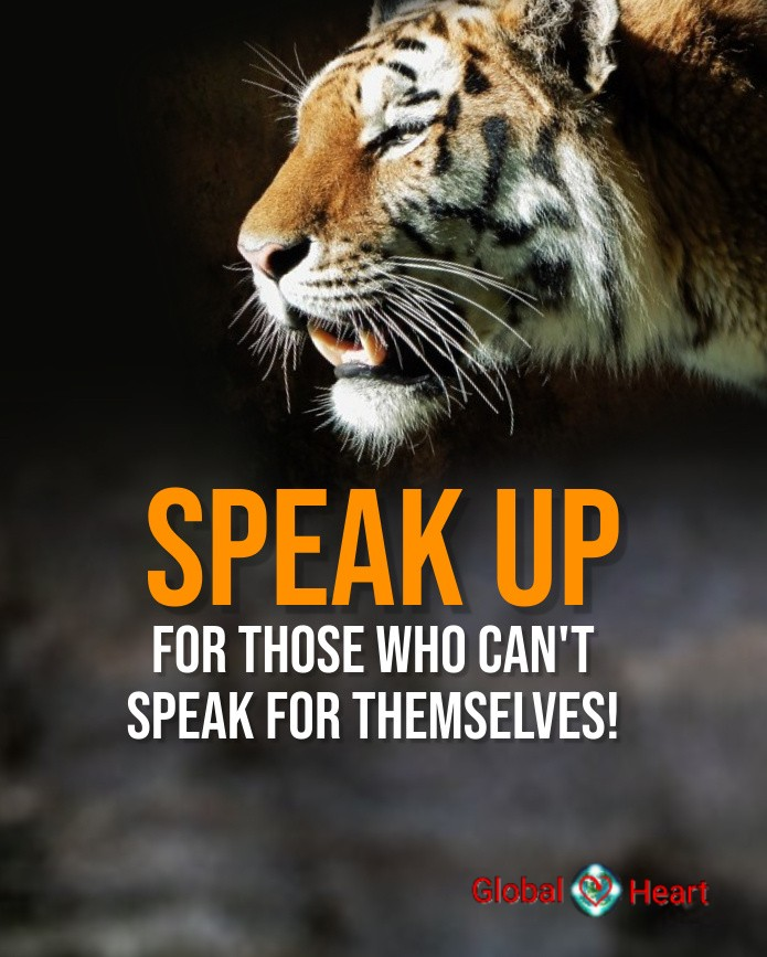 speakupforanimals