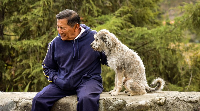 Dogs bring so much love – and improved cardiovascular survival rates for owners