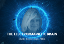 The electromagnetic brain by Shelli Renée Joye, PH.D.