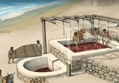 'Wijnfabriek' van 2.600 jaar gevonden in Libanon