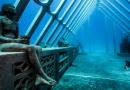 Ondergedomplelde sculpturen in het onderwatermuseum van het Great barrier reef