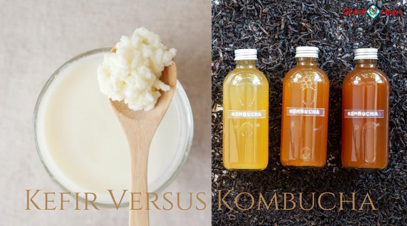 kefir of kombucha