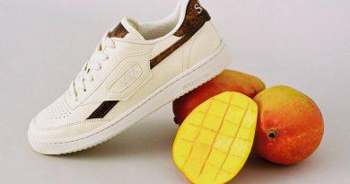 fruitleer